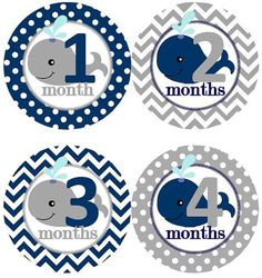 Baby Monthly Milestone Growth Stickers Navy Grey Whale Nursery Theme Baby Shower Gift Baby Photo Prop