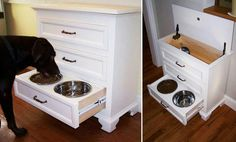 Based on the size dog you own you can determine which height drawer to use for the food and water bowl.