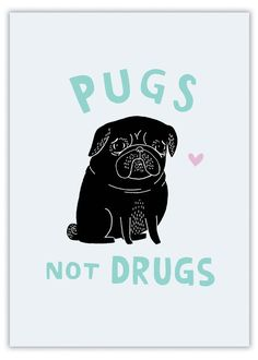 pugs not drugs (black pug) by gemma correll