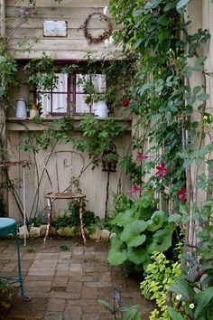 Small Courtyard Gardens, Small Courtyards, Outdoor Gardens, Forest Garden, Garden Paths, Outdoor Rooms, Outdoor Living, Garden Plants Vegetable, Small Space Gardening