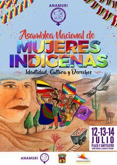 Asamblea Nacional de Mujeres de Pueblos Originarios de Chile