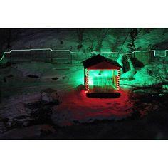 Nightlight at  @archazor_chimgan #Chimgan. #WestTiangShang   #mountains #camping #nature #travel #hiking #pine #traveling #rocks #tourism #advanture #outdoor #traveler #tracking #photo #photography #BestMountainsArtists #фото #поход #горы #природа #туризм #путешествия #чимган #кемпинг #скалы #хайкинг