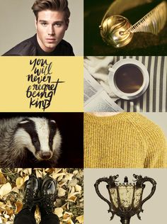 Cedric Diggory (requested by @the-grey-wolf-queen)