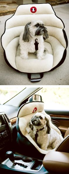 Pup saver car seat. Need this for my pain in the ass who wants to climb all over the car.