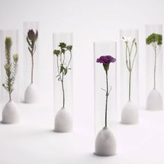 Tokyo design week: Japanese design company Rock Paper Scissors has designed a product that acts as both packaging and a display system for fresh flowers. Deco Floral, Arte Floral, Floral Design, Art Design, Tokyo Design, Flower Packaging, Japanese Flowers, Green Flowers, Exotic Flowers