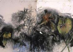 Jim Dine - flowers - Pictify - your social art network Jim Dine, Abstract Images, Art Images, Pop Art Movement, Social Art, National Gallery Of Art, Botanical Art, Botanical Drawings, Art Sketchbook