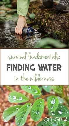 Easy Off The Grid Water Purification System Organization: An Analysis Of Key Aspects In Making Drinking Water - Prep Help Car Survival Kits, Survival Life Hacks, Survival Food, Outdoor Survival, Survival Prepping, Survival Skills, Survival Stuff, Survival Quotes, How To Make Drinks
