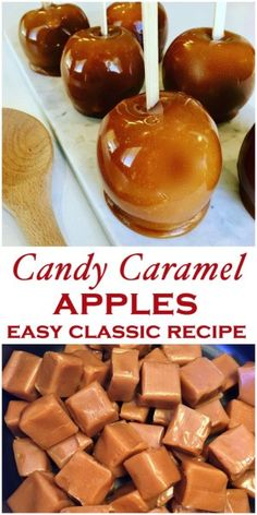 Caramel Apples Recipe – Peter's Food Adventures Caramel Apples are a family autumn favorite, perfect for halloween and parties. An easy fall classic the whole family will love – Kraft Caramel Apples Carmel Apple Recipe, Caramel Recipes, Homemade Caramel Apples, Mini Caramel Apples, Carmal Apples, Caramel Apple Pops, Apple Recipes Easy, Fall Recipes, Holiday Recipes