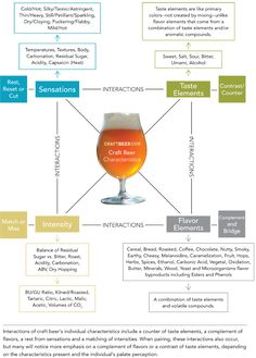 Craft Beer Characteristics Chart: craft beer and food pairings