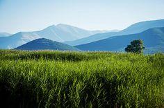 Land of beautiful nature in Greece - Prespa. By Mariana Lisina