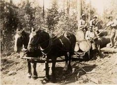 Sleigh Loaded and Heading for the Mill, Hatzic,Mission - 1920