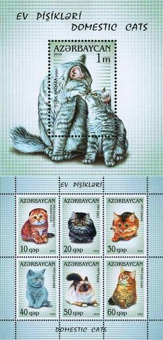 Series of postage stamps from Azerbaijan featuring domestic cats Art Postal, Postage Stamp Art, Love Stamps, Land Art, Stamp Collecting, I Love Cats, Mammals, Kitty, Illustration