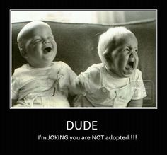 hilarious reminds me of twins I know