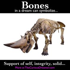 Bones as a dream symbol can mean... More at TheCuriousDreamer.com... #dreammeaning   #dreamsymbols