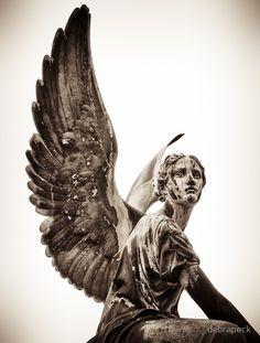 angel sans souci by debrapeck