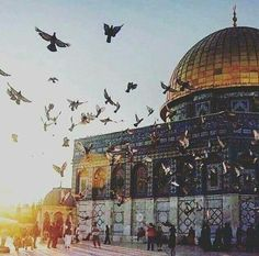 doom of rock Islamic Images, Islamic Pictures, Beautiful Mosques, Beautiful Places, Islamic Sites, Terra Santa, Mecca Islam, Palestine Art, Mosque Architecture