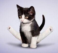 20 Minute Beginner Yoga Workout For Flexibility - Avocadu
