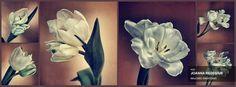 Praca finałowa // www.facebook.com/OlympusFOTOLOTNI