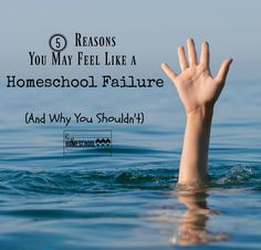 5 Reasons You May Feel Like a Homeschool Failure Homeschooling In Florida, How To Start Homeschooling, Homeschool Curriculum, Online Homeschooling, Minimalist Homeschool, Tot School, High School, Feelings, Movie 43