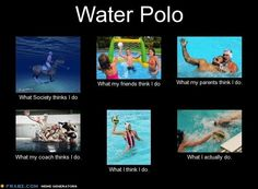 """Water Polo. My favorite question I get: """"How do you get the horses in the pool??"""""""