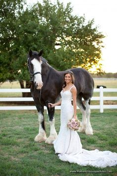 Love pictures with horses! Bouquet: Ranunculi, Hydrangea, Dahlias, Spray Roses, Globe Thistle, Sedum, Saw Leaf Daisy, and the very romantic and chic Hanging Amaranthus!