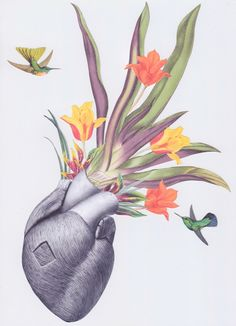 """""""regrowth"""" anatomical heart collage art by bedelgeuse / Anatomical <3"""
