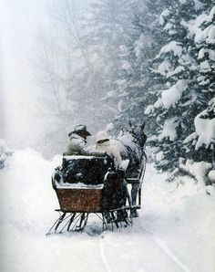 winter pictures | This is on my bucket list! For years have wanted to take a sleigh ride ...