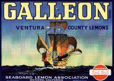 Galleon Lemons. #crateart