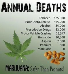 The facts speak for themselves!Support #cannabis with #AmericanGreen!ARE YOU REGISTERED FOR OUR NEWSLETTER?www.americangreen.com