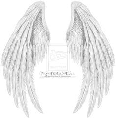 Folded Angel Wings | Dragon Wings Folded Folded white psd by