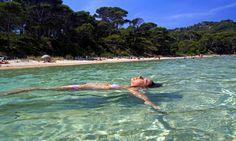 Pine-backed beach on Porquerolles, France. Travel Tips, Scenery, France, Pine, Beach, Outdoor Decor, Solitude, Islands, Beautiful