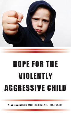 Image result for book help your aggressive child
