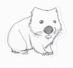 Wombat Drawing Related images to wombat drawing time drawing a wombat