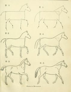 """From a public domain book, """"Drawing made easy : a helpful book for young artists; the way to begin and finish your sketches, clearly shown step by step (1921), by E G Lutz."""" Download this lovely antique book as pdf, kindle or epub here: https://archive.org/stream/drawingmadeeasyh00lutz"""