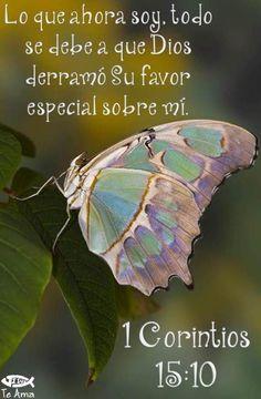 1 Corintios 15:10 facebook.com/jesusteamamgaministries