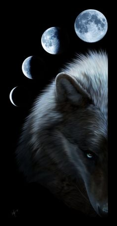 You Could Never Tame by *Novawuff on deviantART... SOY TU LUNA COMPLETA, A LA MITAD, EN PARTES, OBSCURA...