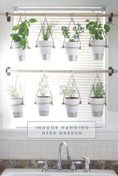 DIY Indoor Hanging Herb Garden. Learn how to make an easy, budget-friendly hanging herb garden for your window. It will make your house prettier and fill your gardening void during winter months.