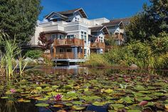 Vancouver Canada Photograph - Pond With Lotus Flowers by Alex Lyubar #AlexLyubarFineArtPhotograph#VancouverCanadar#NewWestminster#ModernBuilding#Pondoat#Water#LotusFlowers#ArtForHome#FineArtPrint
