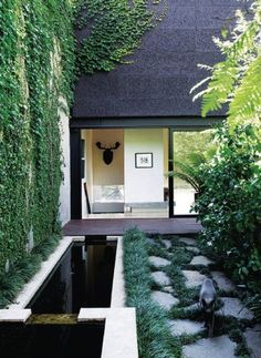 Garden Design Ideas & Inspiration : Elongated water feature next to random stone steppers interplanted with Ophiopog
