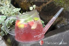 TheLostGardens' serve their Rekorderlig in a watering can!