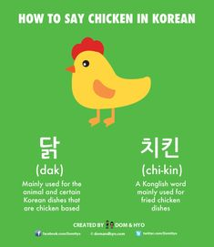Korean Language Infographics – Page 5 – Learn Basic Korean Vocabulary & Phrases with Dom & Hyo Korean Slang, Korean Phrases, Korean Words Learning, Korean Language Learning, Learn Basic Korean, Learn Hangul, Korean Lessons, Learning Goals, Language Study