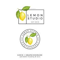 Lemon Logo Design Photography Logo Lemon Design Modern Branding Blog Branding
