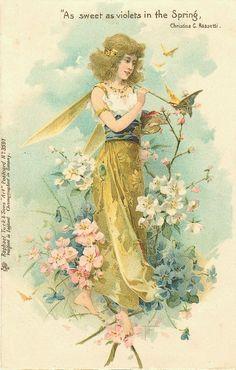 Illustration fées et elfes
