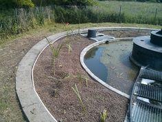 Tak prezentuje się osiedlowa oczyszczalnia ścieków, którą wykonaliśmy dla naszego klienta. Dzięki roślinom całość prezentuje się jeszcze bardziej naturalnie.