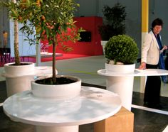 Milan Furniture Fair 2010: Plants that are Lamps, Lamps that are Plants : TreeHugger