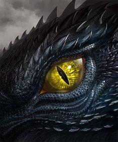 Dragon Eye Drawing, Dragon Sketch, Fantasy Creatures, Mythical Creatures, House Of Dragons, Regard Animal, Dragon Shop, Dragon Artwork, Eye Painting