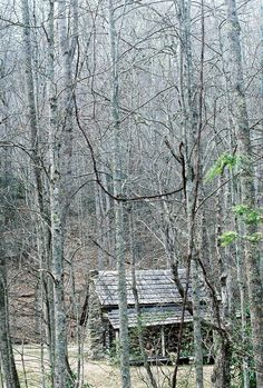 Cook Cabin on Little Cataloochee hiking trail in Cataloochee Valley, NC side of The Great Smoky Mountains National Park