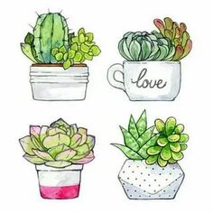 Succulent Painting Art Watercolor Print New Ideas Succulents Drawing, Cactus Drawing, Watercolor Succulents, Watercolor Cactus, Cactus Art, Watercolor Print, Watercolor Paintings, Cactus Flower, Painting Art