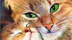 Mother cat and Kitten - Ballpoint Pen by VianaArts.deviantart.com on @deviantART
