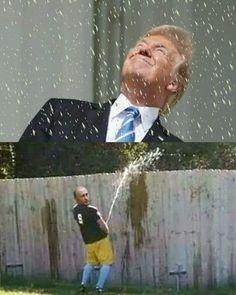 Making Donald Drumpf Again Funny Video Memes, Funny Jokes, Hilarious, Funny Shit, Funny Pics, Funny Stuff, Caricatures, Donald Trumph, Trump Idiot